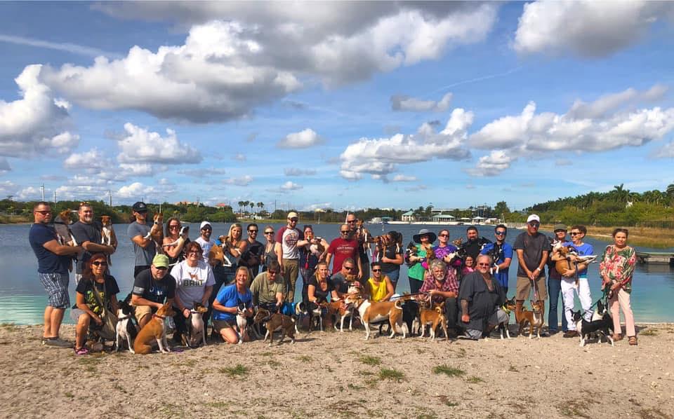 South Florida Basenji Meetup